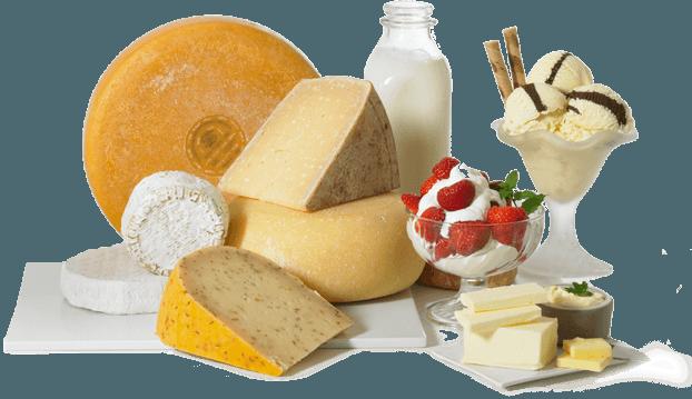 bezlaktózová diéta