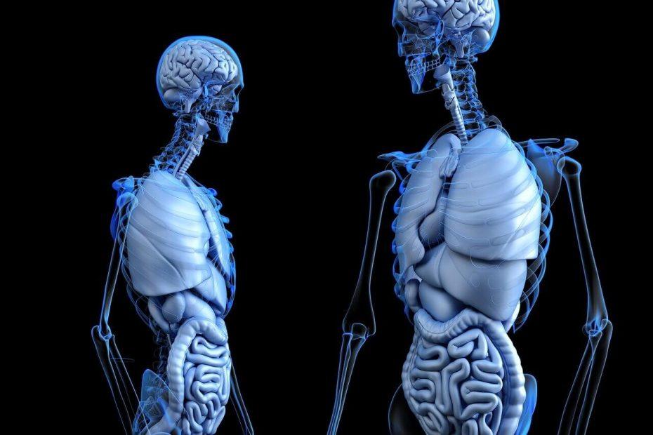 crohnova choroba